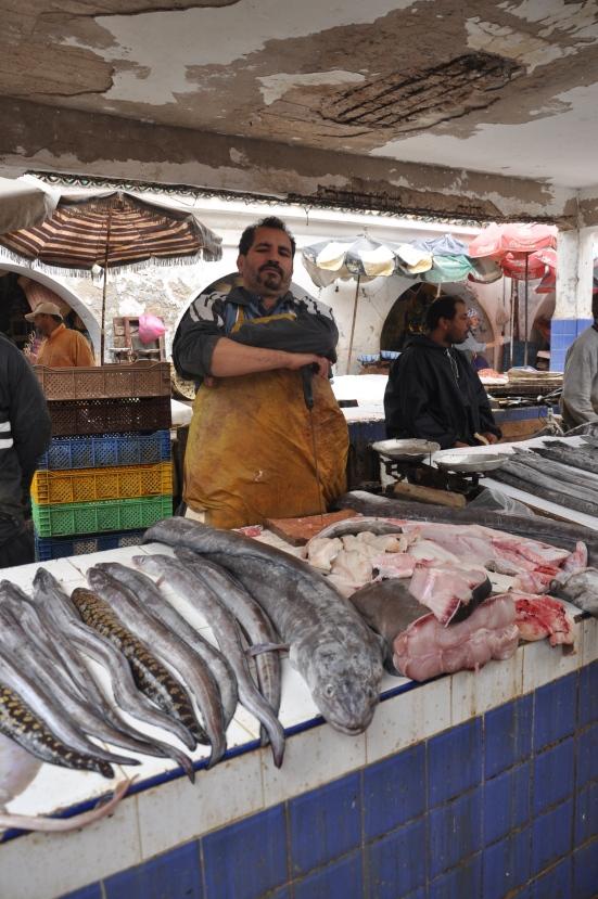 The Essaouira fish market, hidden deep in the medina, in all its glory.